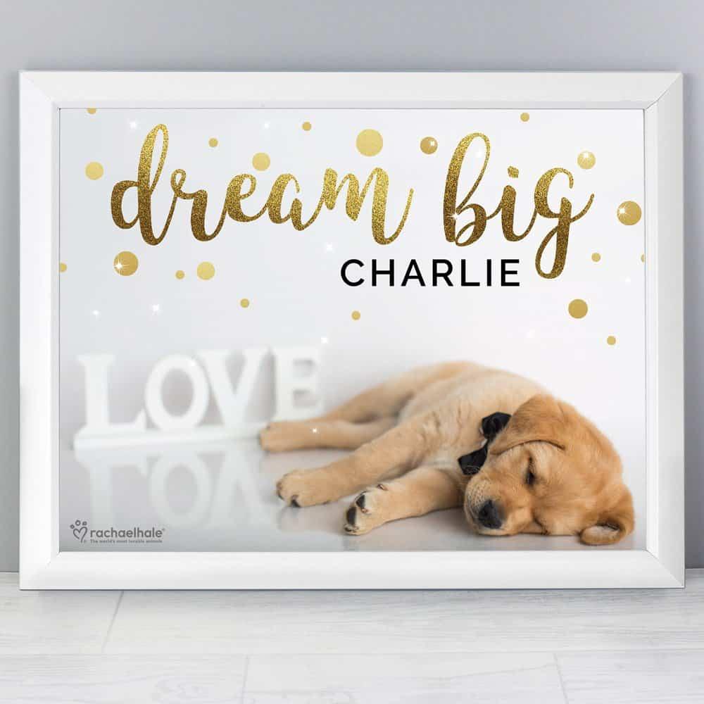 Rachael Hale Dream Big White Framed Print